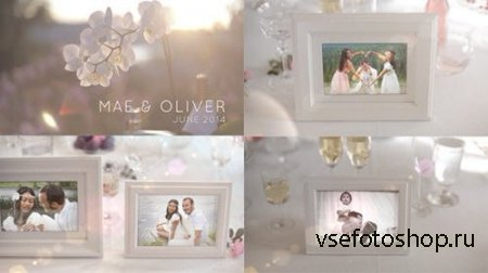 White Photo Gallery - Special Events - Project for After Effects (Videohive ...