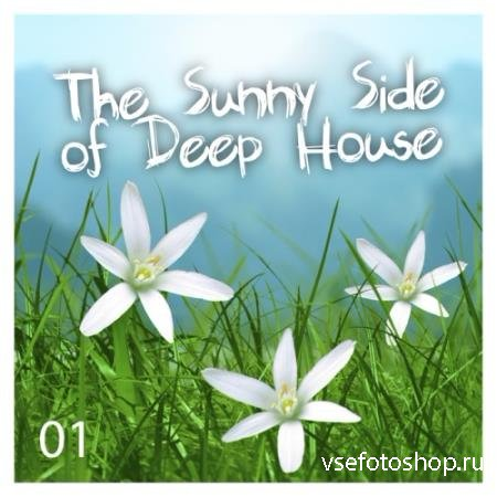The Sunny Side Of Deep House Vol 1 (2014)