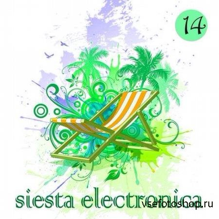 Siesta Electronica, Vol. 14