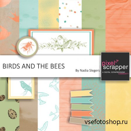 Scrap - Birds and the Bees