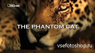The Phantom Cat (2012) HDTV